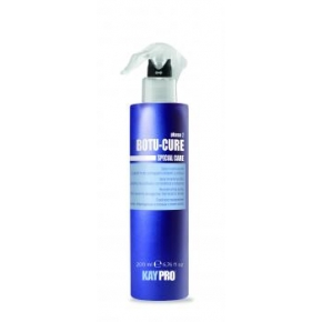 Spray- tratament cu peptide pentru parul degradat care tinde sa se rupa - RECONSTRUCTING SPRAY WITH PLANT PEPTIDES- KAYPRO